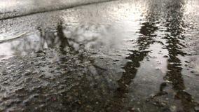 雨水水坑 影视素材