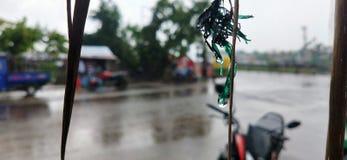 雨水滴  免版税库存图片