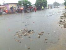 暴雨现象在西非 库存照片