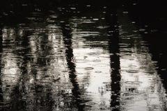 从雨的波纹 免版税库存照片