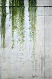 雨纹理 免版税图库摄影