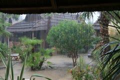 雨苏门答腊 库存照片