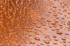 雨水滴在木头的 免版税库存图片