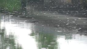 雨水滴在河落 股票视频