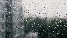 雨水滴在窗玻璃的 股票视频