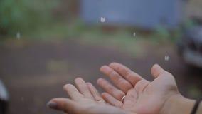 雨水滴在延长的女性棕榈落 股票视频