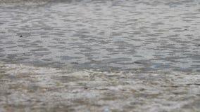 雨滴水通过水坑 股票视频
