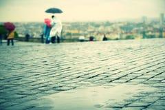 雨 免版税图库摄影