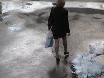 雨 免版税库存图片