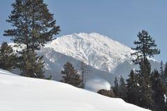 雪一定的克什米尔谷 免版税库存照片