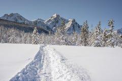 雪上电车足迹带领与爱达荷冬天山  库存图片