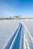 雪上电车跟踪 库存照片