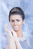 雪与精美神色的女王/王后概念 库存图片