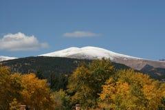 雪与金白杨木的加盖的山 库存照片