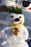 雪人示范 免版税库存照片