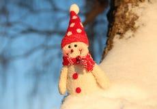 雪人 免版税图库摄影