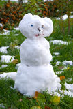 雪人 库存照片