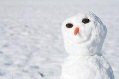 雪人 库存图片