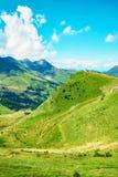 滑雪倾斜的绿色在淡季期间的 免版税库存图片