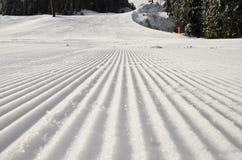 滑雪倾斜雪板 图库摄影