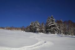 滑雪倾斜风景看法与滑雪踪影的在非修饰的滑雪道 图库摄影