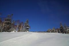 滑雪倾斜风景看法与滑雪踪影的在非修饰的滑雪道 库存照片