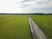 雪兰莪,马来西亚2017年11月15日:稻田鸟瞰图在Sungai Sireh,瓜拉雪兰莪的 免版税库存图片