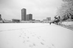 雪冬天场面中国科学技术大学2 免版税库存照片