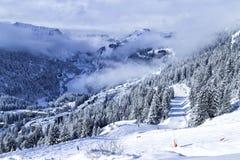 滑雪冬天的阿尔卑斯和与多雪的山峰,树的雪板运动手段 库存照片