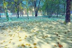 雪冬天秋天夜间风景 图库摄影