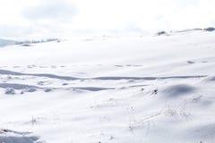 雪冬天背景,在雪的足迹 免版税库存照片
