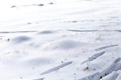 雪冬天背景,在雪的足迹 库存照片