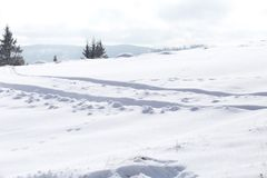 雪冬天背景,在雪的足迹 免版税库存图片