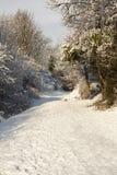 雪冬天 库存图片