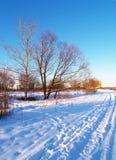 雪冬天 免版税库存图片