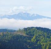 雪加盖了在森林后面地面的山峰  免版税库存图片