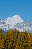雪加盖的山, Kluane国家公园 免版税图库摄影