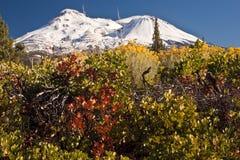 雪加盖的山 免版税图库摄影