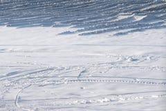 雪原 免版税库存照片