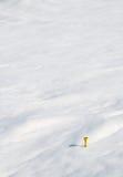 雪发球区域黄色 免版税库存照片