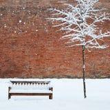雪和偏僻的结构树包括的长凳 库存图片
