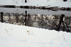雪和反射在城市运河 库存照片