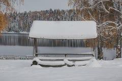 雪和小屋 免版税库存照片