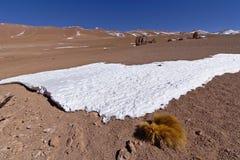 雪和岩石在阿塔卡马沙漠 免版税图库摄影