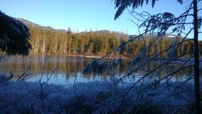 雪和湖 免版税库存照片