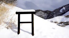 雪和空白的标志在森林雪winte 库存照片