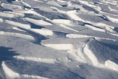 雪图画  库存图片