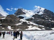 雪圆顶冰川的,加拿大游人 免版税库存照片