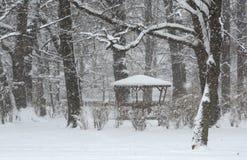 雪在公园在索非亚,保加利亚2014年12月29日 免版税库存图片
