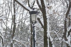 雪在公园在索非亚,保加利亚2014年12月29日 库存图片
